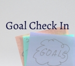 Featured-Image-Goal-Check